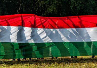 VII. Magyarok Országos Gyűlése